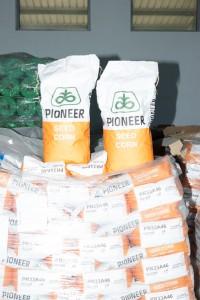 pioneer-seed-corn-pcenka-Bispromet-Bitola